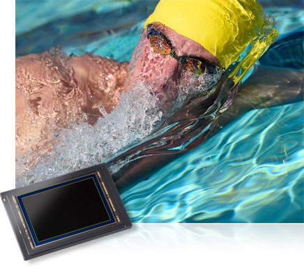 Nikon D4S photo of a competitive swimmer in a pool, partially submerged and the image sensor inset