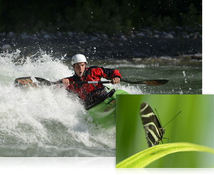 Photo of a kayaker with the inset close up photo of a butterfly