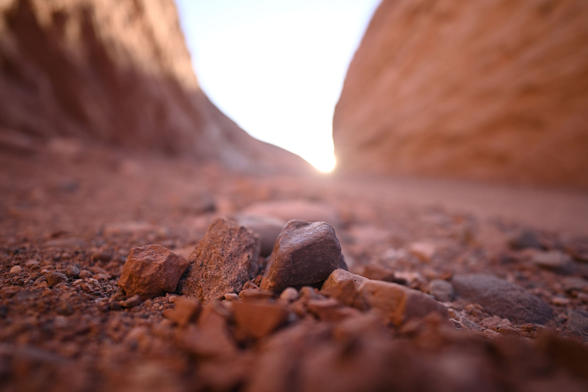 shallow depth of field image of rocks on the desert floor, taken with the NIKKOR Z 20mm f/1.8 S