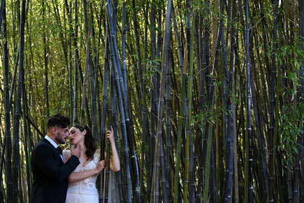 bride and groom in a bamboo forest, taken with the Z 7 and NIKKOR Z 50mm f/1.8 S lens