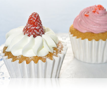 Photo of two cupcakes shot using the LD-1000 LED Movie Light for illumination