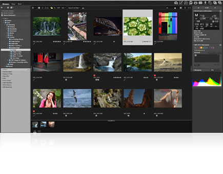 ViewNX-i browser view screenshot showing a variety of photos