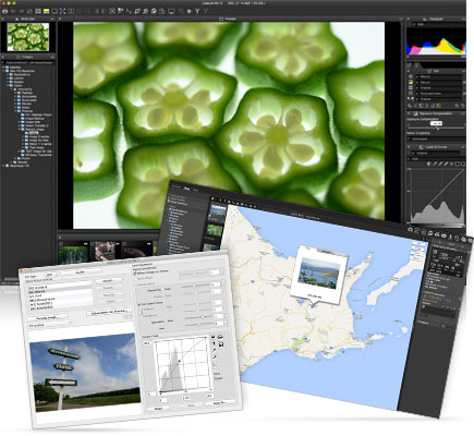 Screenshot of ViewNX-i software with the image of cut fruit displayed full frame, inset with a map and Picture Control Utility 2 dialog box