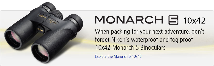 Explore the Monarch 5 10x42 Binoculars