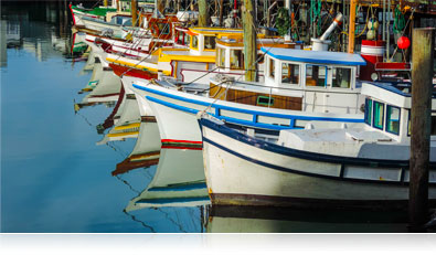 Photo of colorful boats at a marina