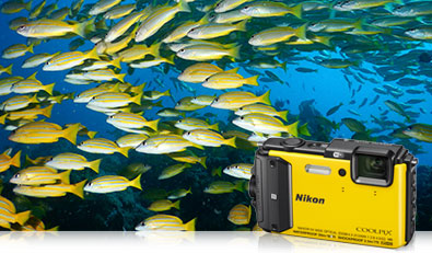 COOLPIX AW130 underwater photo of a school of yellow fish and the camera inset