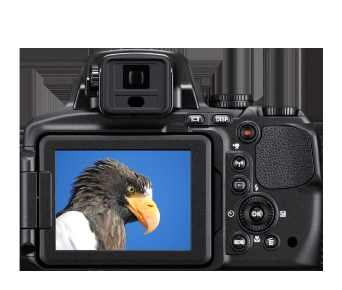 Como Importar Câmeras