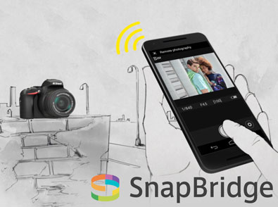 illustration of a D5600 on a wall and a hand holding a smartphone running SnapBridge