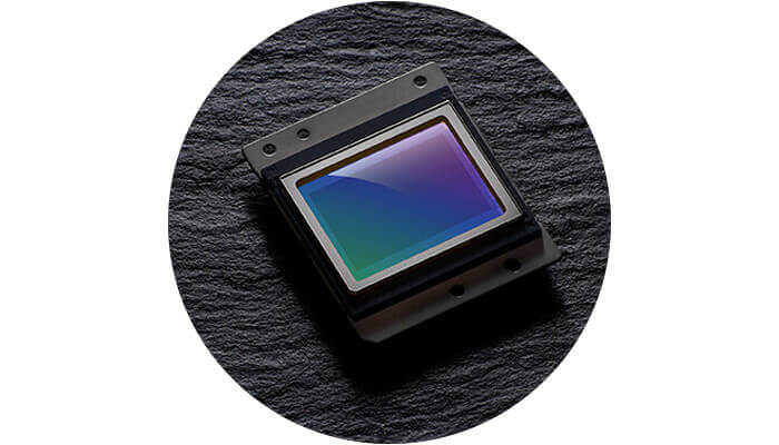 photo of the D7500's CMOS sensor
