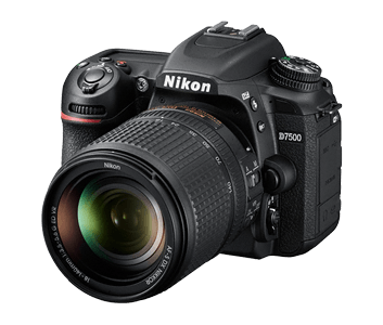 DSLR Cameras Overview | Entry-Level, Enthusiast & Professional | Nikon