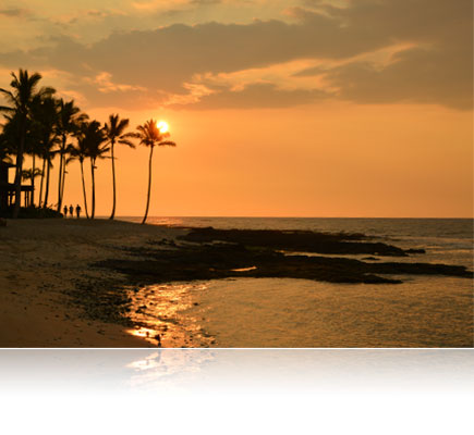 photo of palm trees and a seashore at sunset shot with the AF Zoom-NIKKOR 24-85mm f/2.8-4D IF lens