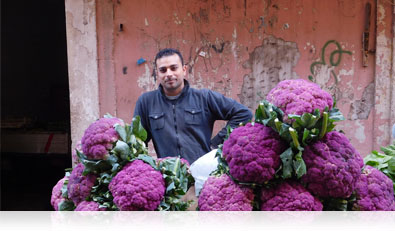 COOLPIX S7000 photo of a man and large purple cauliflowers on a street