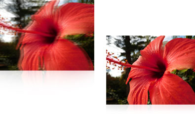COOLPIX S7000 photo of a red flower with and without vibration reduction image stabilization