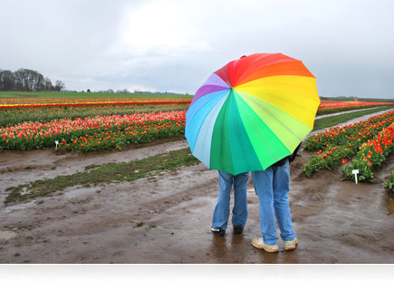 A photo of a parent and child hiding beneath a brightly colored umbrella during a rainy day in a flower garden taken with the COOLPIX S30.