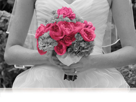 black and white photo of a bride's torso holding flowers that have selective color of hot pink in color