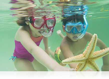 Photo of a girl and boy underwater snorkeling and holding a starfish