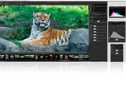 Screenshot of Capture NX-D software with floating palettes and a large image of a tiger in the center work area