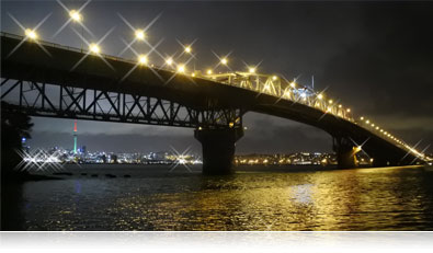 Nikon 1 J5 photo of a bridge lit up at night