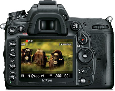 Photo of the rear of the Nikon D7000 with an image of wildlife on the LCD