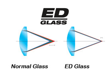 ED Glass